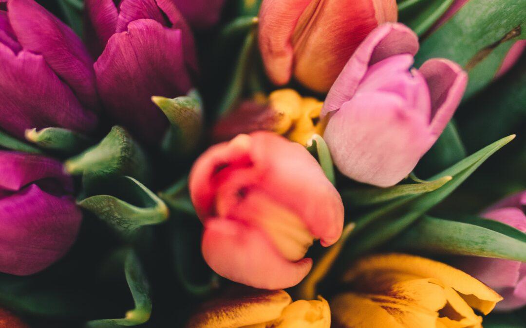 Llega la primavera, ¡llegan los colores vivos!